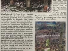 20170129200621_Zeitung_228x171-crop-wr.png